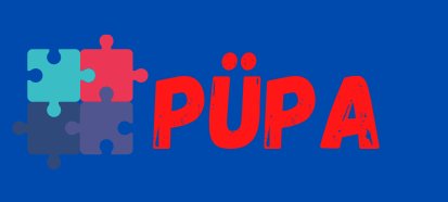 PYPA - Noorte Uudisteportaal